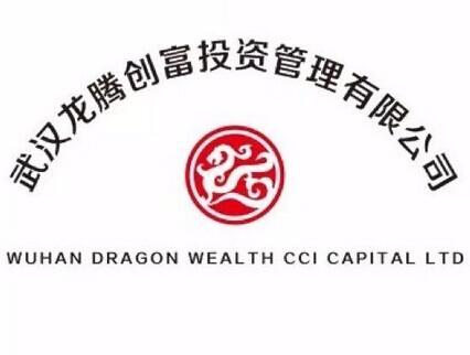 武汉龙腾创富投资管理有限公司