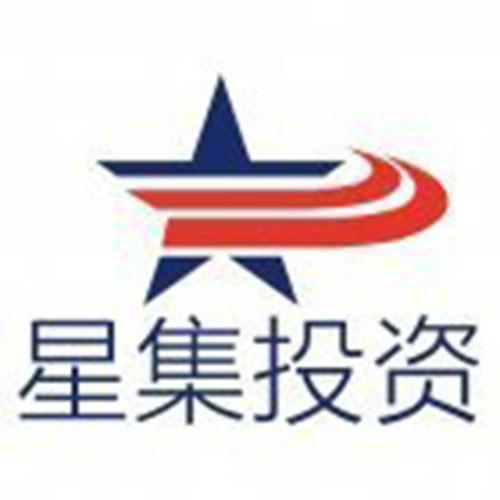 广州市星集投资有限公司