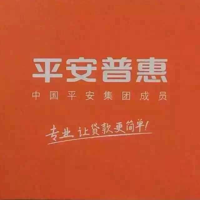 平安普惠天津塘沽分公司(信贷)